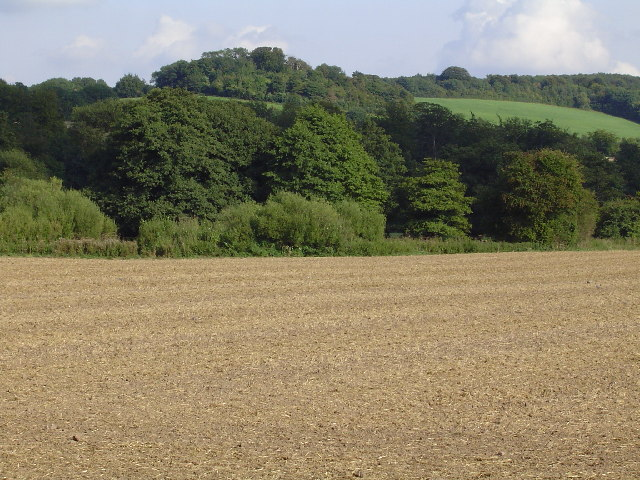 Farm land near Mountain Street