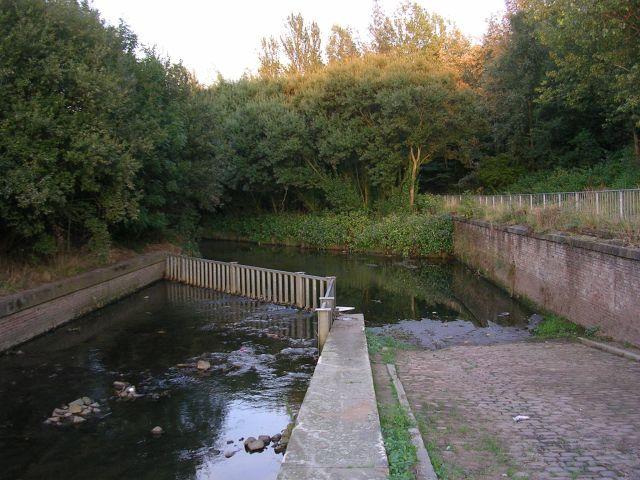 River Medlock