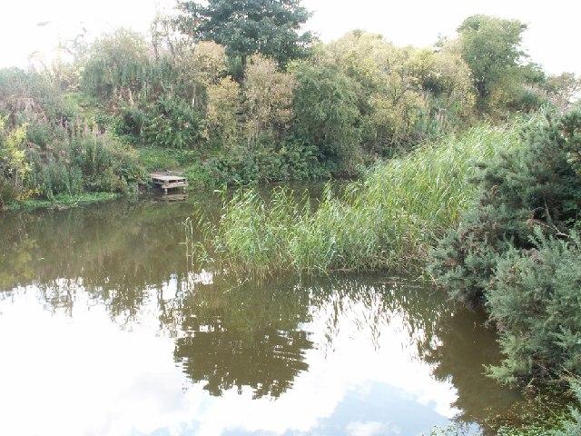 Kincaple Pond
