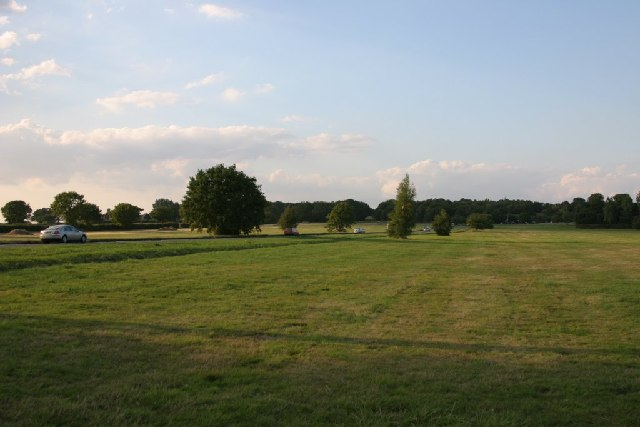 Galleywood Common