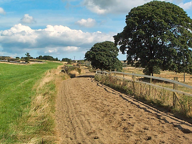Riding path, High Eldwick