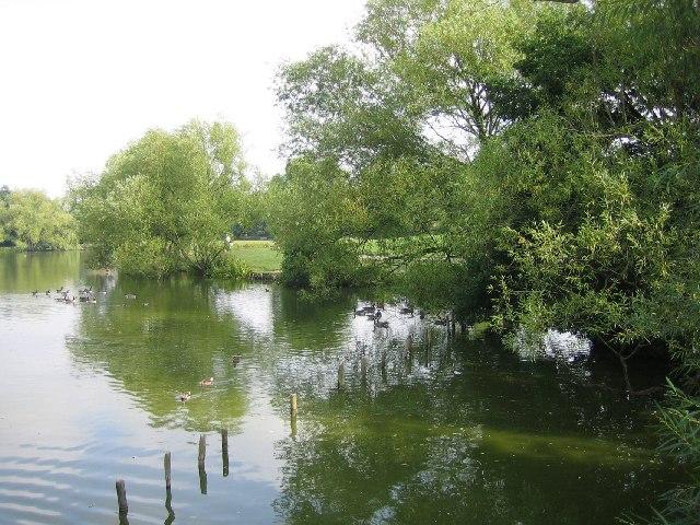Lake Meadows, Billericay