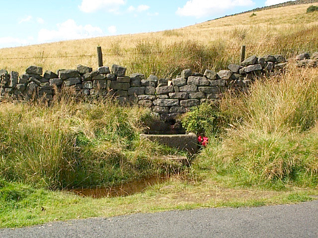 Roadside spring, High Bradup, Morton Moor