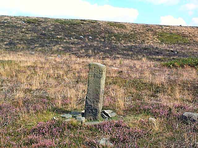Remains of cross, Morton Moor