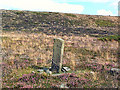 SE1044 : Remains of cross, Morton Moor by David Spencer