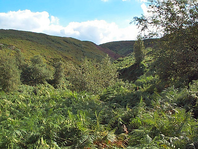 Valley of Spicey Gill