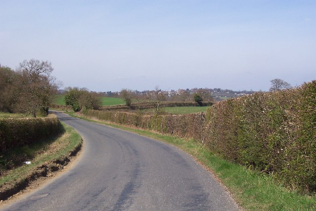 A country lane near Old Mill Farm