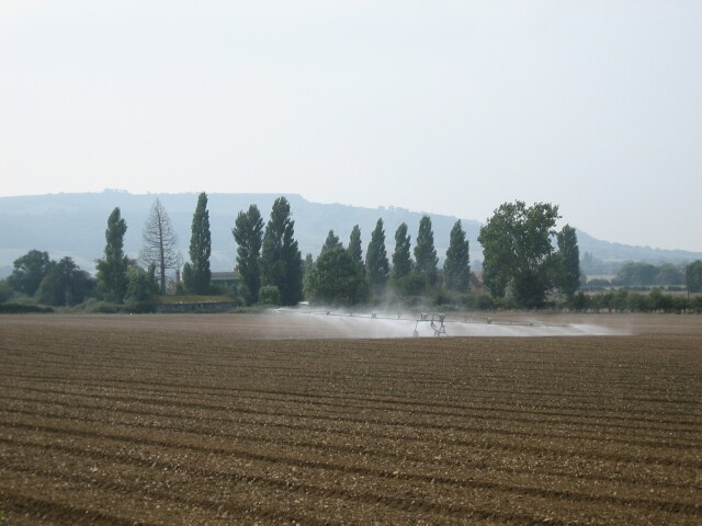 Irrigation near Cropthorne
