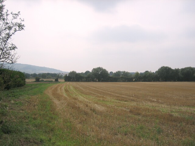 Fields south of Pensham