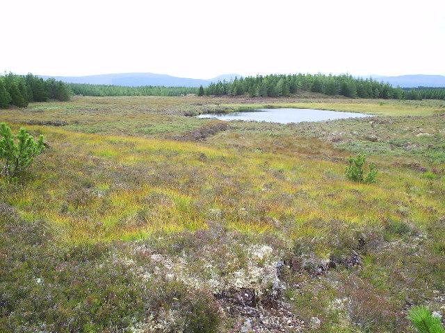 Loch an Daimh Ldhir
