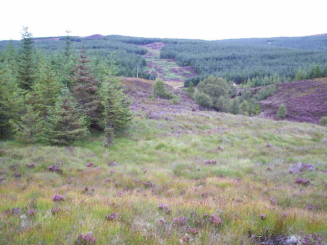 Forest Fire break on the south side of Creag Liath