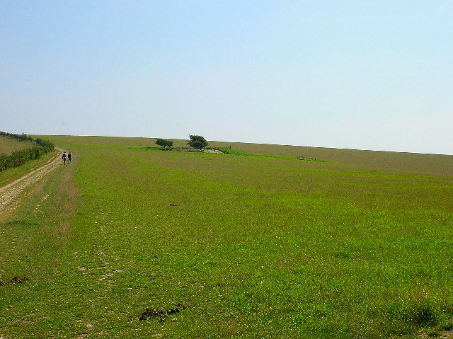 Tumulus, South Downs Way