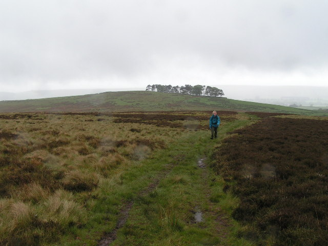 Pennine Way north of Bellingham