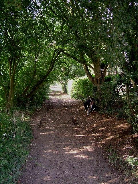 Jolleyboys Lane
