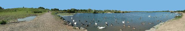 Watermead South Lake