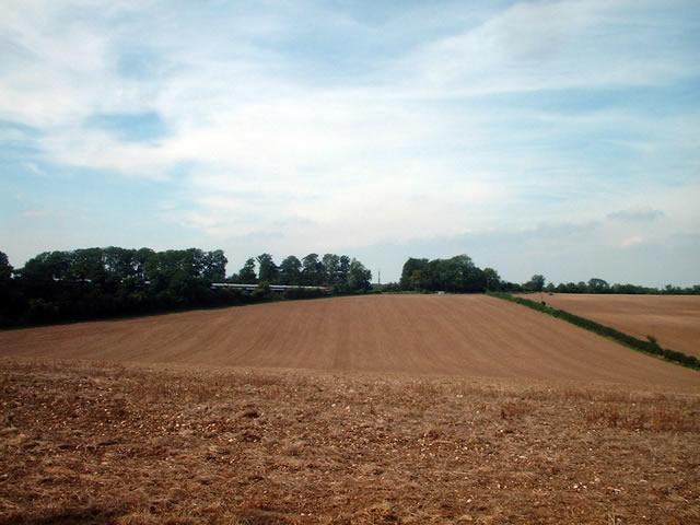 Farmland, Abbott's Barton, Winchester