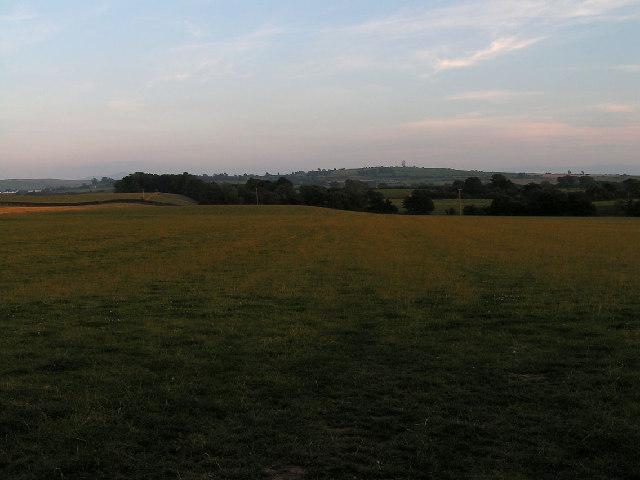 Open Farmland, Blennerhasset