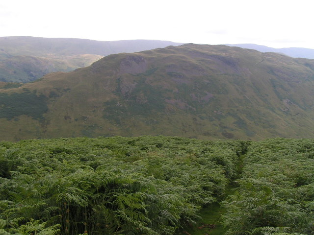 Boredale footpath from High Dodd