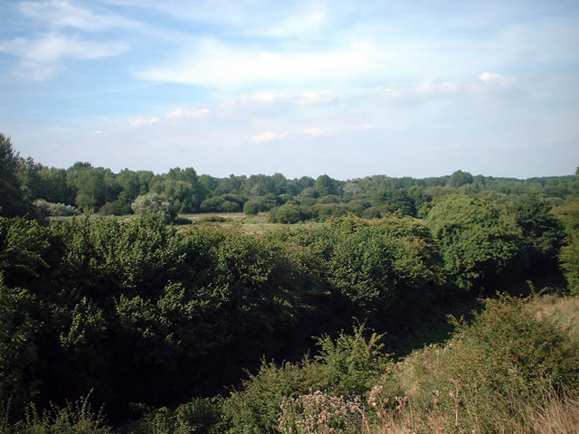Easton Down, near Winchester