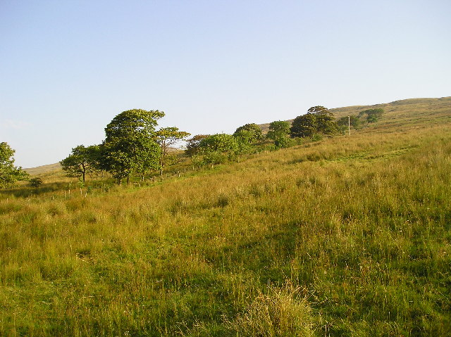 Muirhead Hill