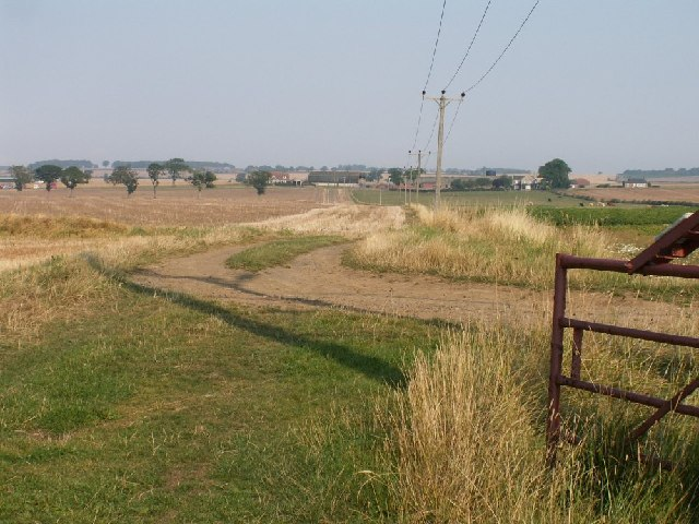 Farm track and poles