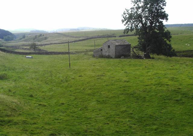 Airton Green