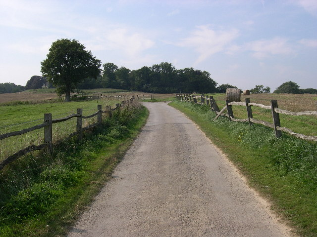 Woldringfold looking west
