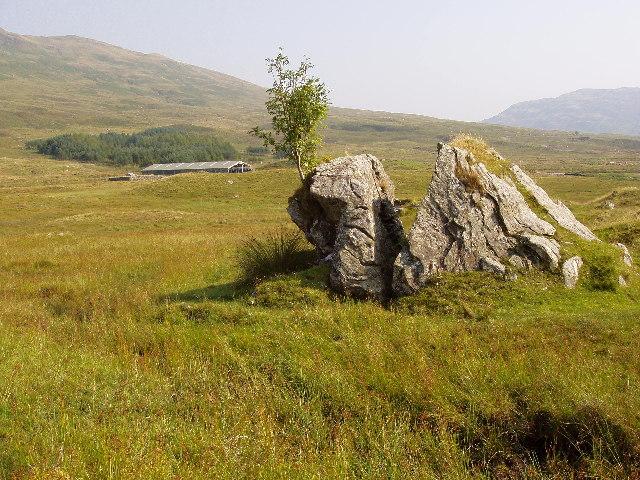Split Rock with Rowan Tree on East Ridge of hill