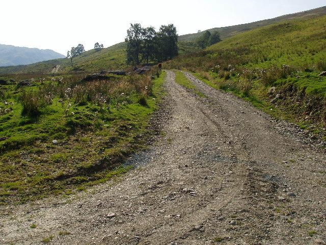 Hill track joining minor road in Glen Buckie