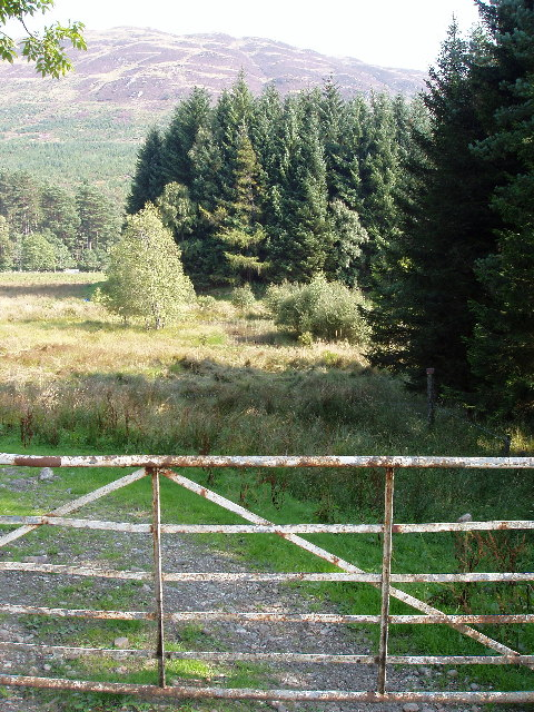 Gate leading down to pond