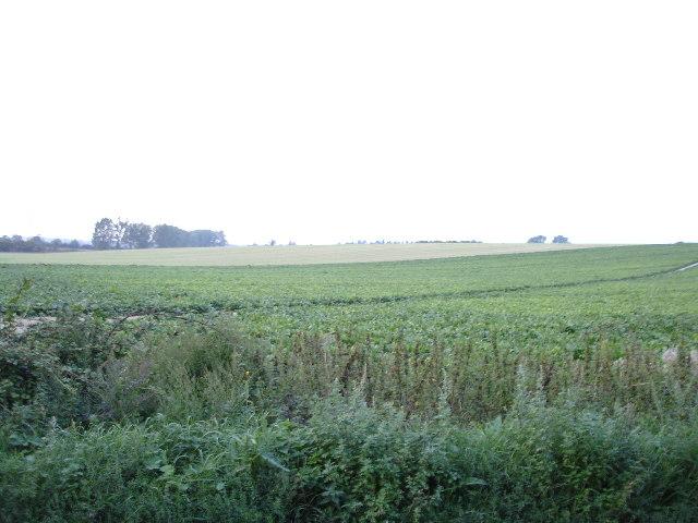 View of Hullockpit Hill