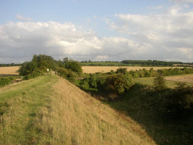 Devil's Ditch near  Newmarket, Suffolk