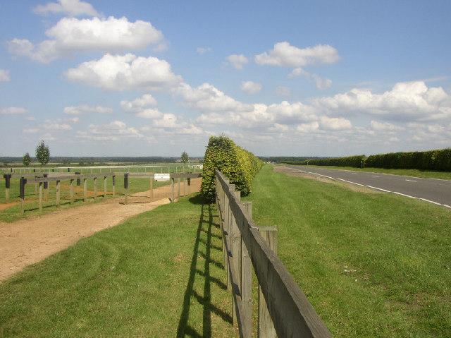 Gallops, Newmarket, Suffolk