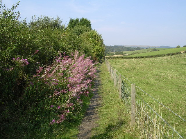 Footpath along boundary of Bearsden