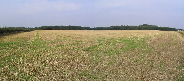 Cropped Field