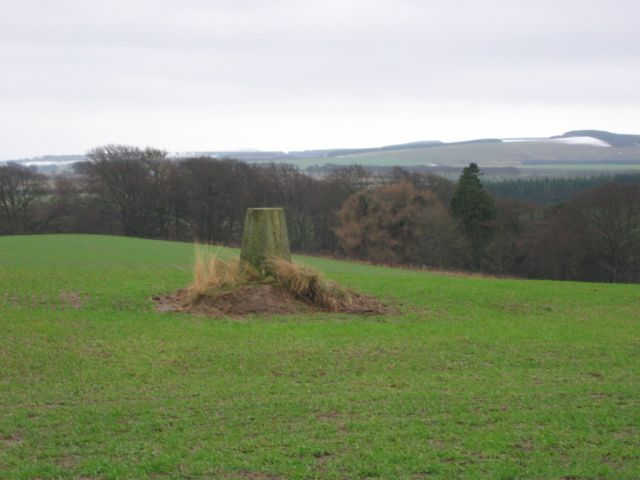 Crichton trig point