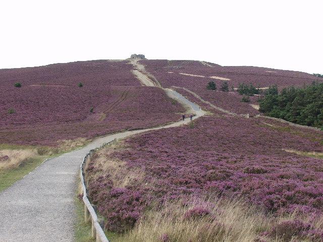 Offa's Dyke Path leading to Moel Famau