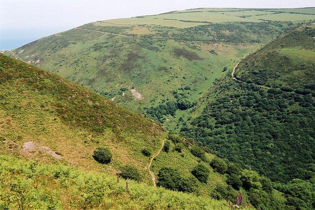 Trentishoe: overlooking Heddon's Mouth Cleave