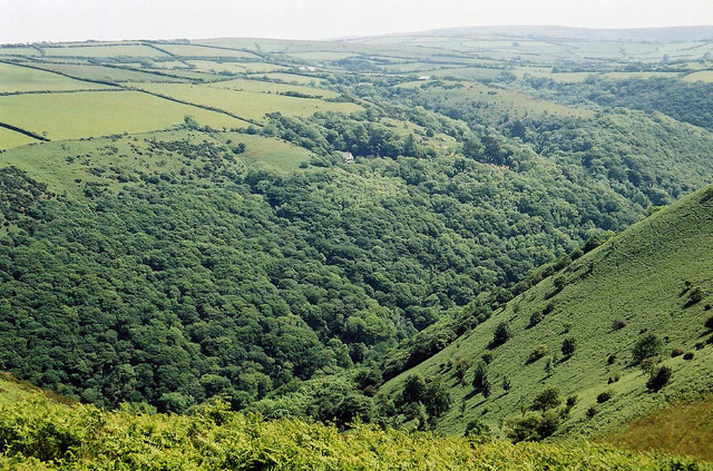 Trentishoe: looking south over the Heddon Valley