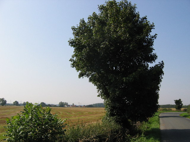 Farmland at TA0523936794