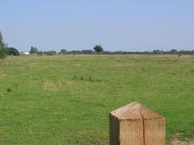 Pasture near Beverley