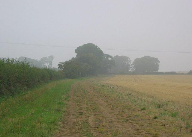 Fields, Airfield.