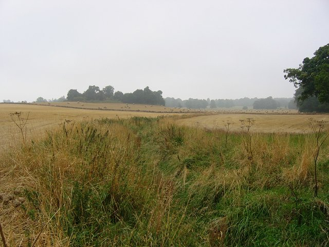 Arable parkland, Cranstoun Riddel.