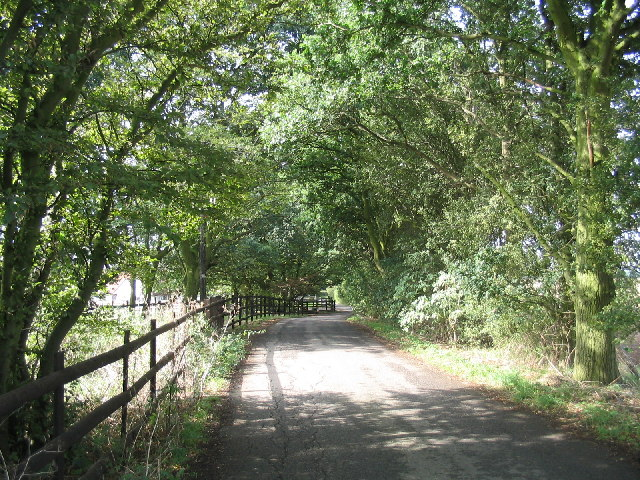 Blind Lane, Little Bursted, Essex