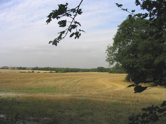 'After the harvest', near Little Bursted, Essex