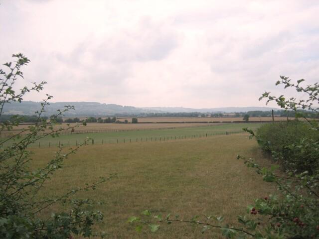 Buckland Fields
