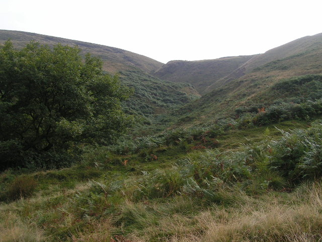 Foxholes Clough