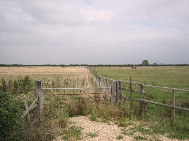 Pasture near Buckland