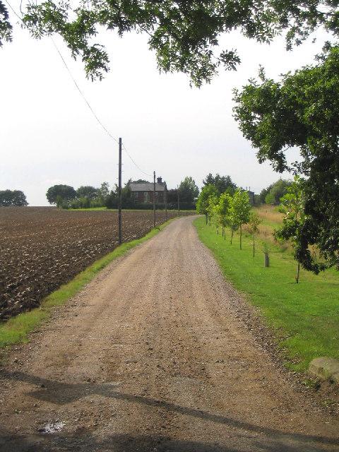 Drive to Blunts Wall Farm, Billericay, Essex
