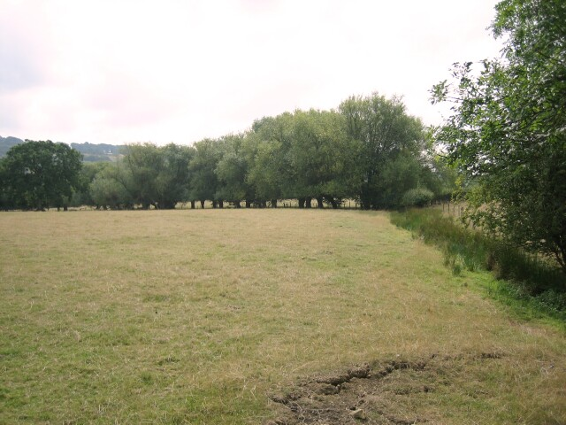Field near Buckland
